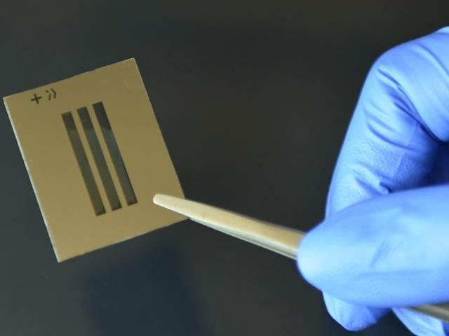 یونیورسٹی آف کیلیفورنیا لاس اینجلس کے ماہرین نے آنول نال کے ایک پیچیدہ مرض کی شناخت کی مائیکروچپ تیار کی ہے۔ فوٹو: بشکریہ یو سی ایل اے