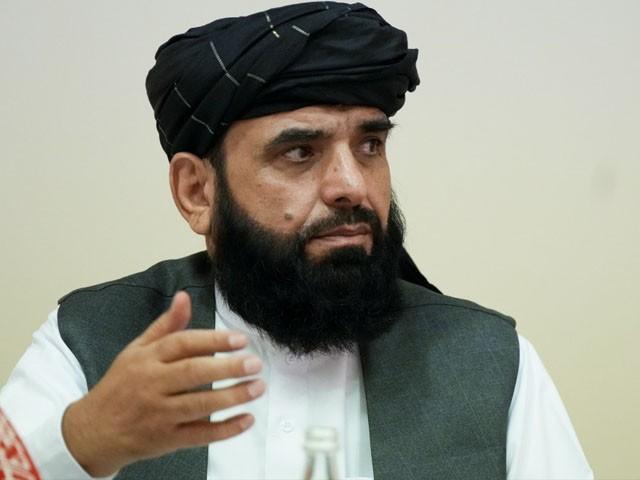 کسی بھی گروہ کو افغان سرزمین کسی دوسرے ملک کے خلاف استعمال کرنے کی اجازت نہیں دیں گے، سہیل شاہین (فوٹو: فائل)