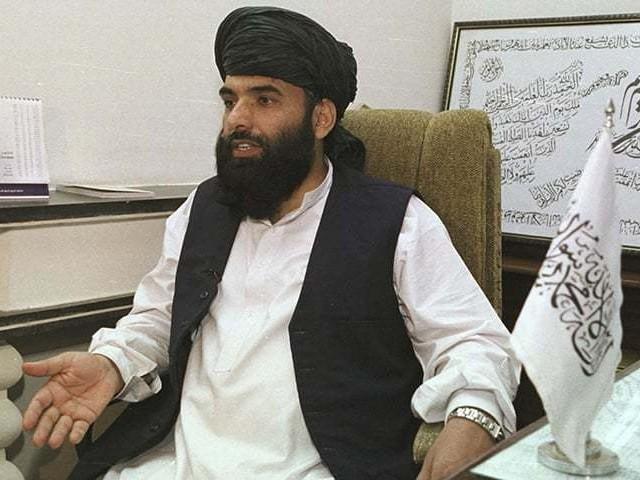 سہیل شاہین طالبان حکومت کے کابینہ رکن اور قطر میں سیاسی دفتر کے ترجمان ہیں، فوٹو: فائل