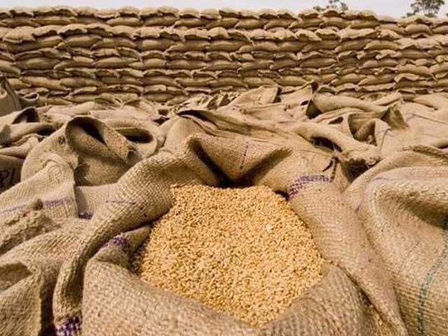 حکومت نے نجی امپورٹرز کو بھی 16 لاکھ ٹن گندم امپورٹ کرنے کے پرمٹ جاری کئے  فوٹو : فائل