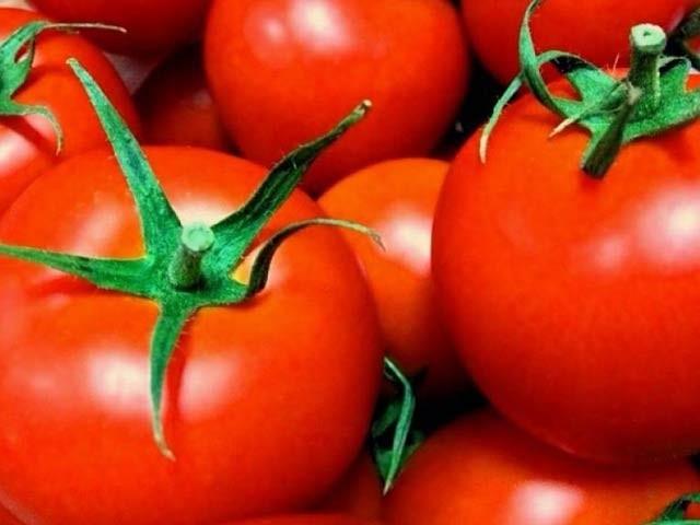 جاپان میں پہلی مرتبہ جینیاتی طور پر تبدیل شدہ ٹماٹر کی باقاعدہ فروخت شروع ہوچکی ہے۔ فوٹو: فائل