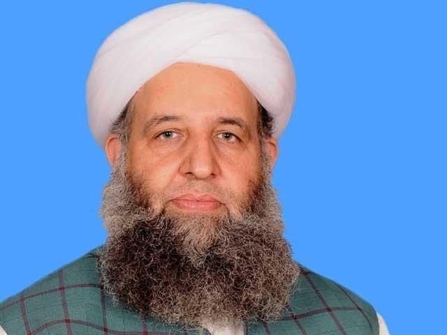 مذہب کی جبری تبدیلی پر لعنت بھیجتے ہیں ، پیر نورالحق قادری فوٹو: فائل