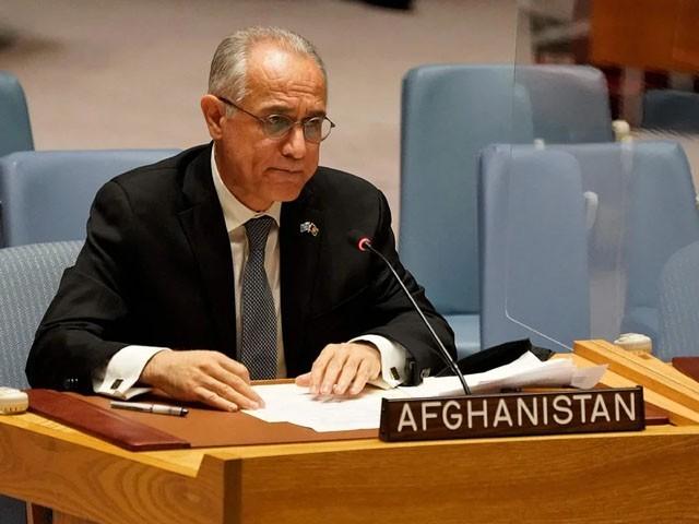افغانستان کے مندوب غلام اسحقزئی نے اپنا نام واپس لے لیا، فوٹو: فائل