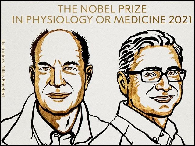 اس سال طب کا نوبل انعام حاصل کرنے والے دونوں سائنسدان ڈیوڈ جولیئس اور ایرڈم پیٹاپوشیئن امریکی ہیں۔ (فوٹو: نوبل فاؤنڈیشن)