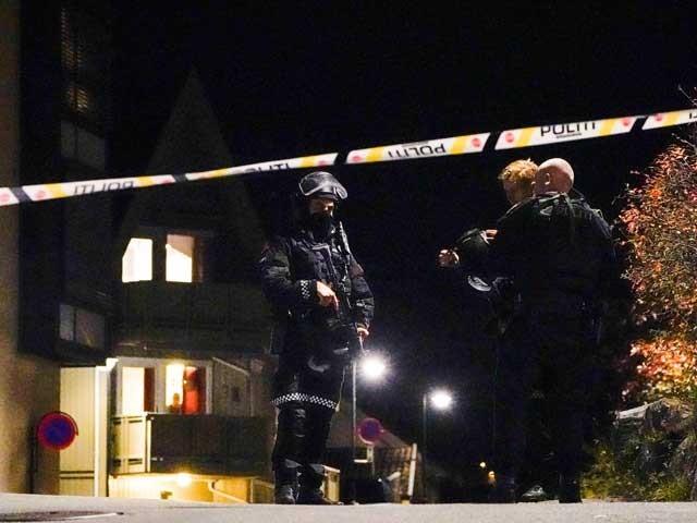 واقعے کے بعد ناروے کی انٹلی جنس سروس کو الرٹ کر دیا گیا ہے فوٹو: فائل