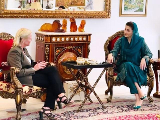 ملاقات میں دو طرفہ امور، ملکی و غیر ملکی معاملات سمیت خطے کی صورتحال پر تبادلہ خیال کیا گیا۔ فوٹو:سوشل میڈیا